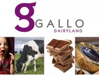 Gallo Dairyland