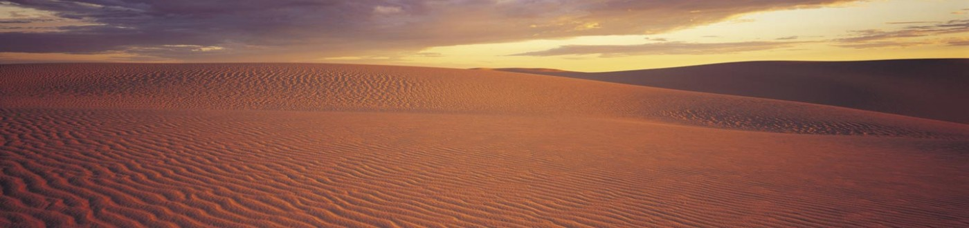 Sand dunes, Mungo National Park
